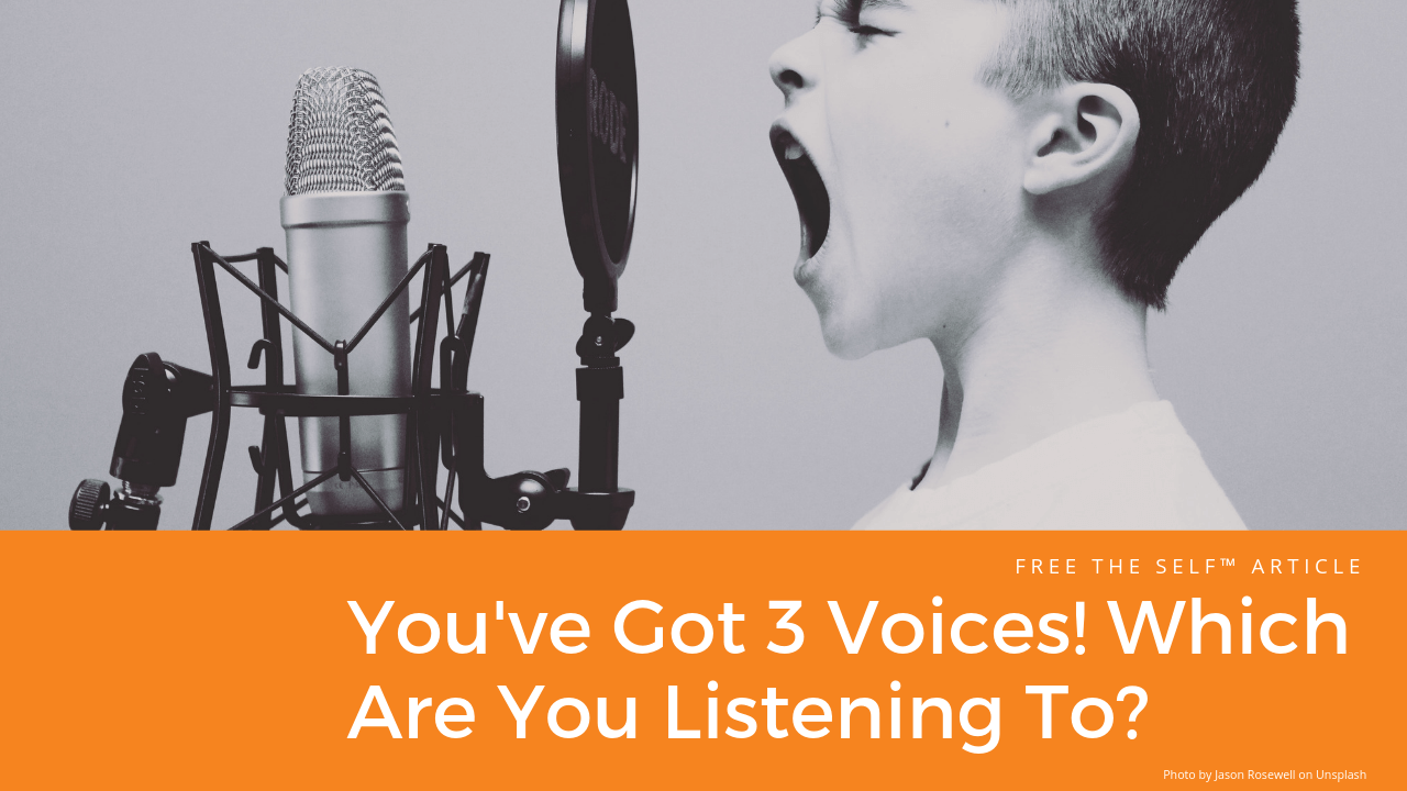 You've Got 3 Voices! Which Are You Listening To?